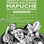 Mapuches en lucha