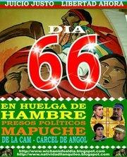 HUELGA DE HAMBRE MAPUCHE