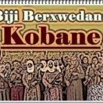 Kobane: la lucha kurda, y los riesgos que le acechan