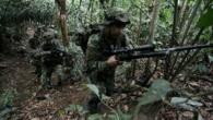 Colombia combates Pajarito 16/01/2013