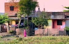 (Documental) DUEÑOS DE LA SEMILLA, LOS DUEÑOS DEL MUNDO