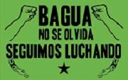 Perú: La masacre de Bagua y la centralidad de los conflictos en torno de los recursos naturales