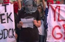 DECLARADAS ZONAS DE AUTOGOBIERNO EN KURDISTÁN NORTE (TURQUÍA)