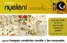 Boletín Nyéléni 24, diciembre 2015. Bosques, comida, comunales