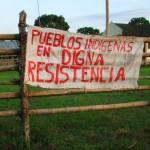 La tenaza política y ecológica que oprime a los pueblos indígenas