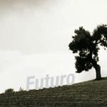 NO DEJES EL FUTURO EN SUS MANOS. Cooperación solidaria ante la crisis del capitalismo global